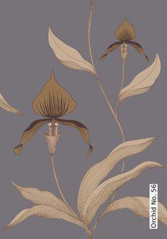 Tapete: Orchid No. 56 - Die TapetenAgentur