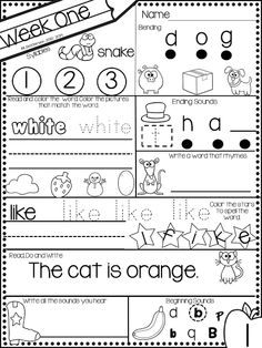 November morning bright kindergarten literacy morning work k Kindergarten Homework, Kindergarten Morning Work, Kindergarten Classroom, Kindergarten Activities, Learning Time, Early Learning, Transitional Kindergarten, Classroom Fun, Reading Activities