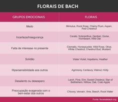 Florais de Bach: como usar, onde comprar e muito mais