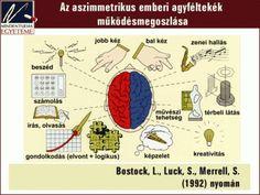 Tanulásmódszertan :: OkosKaLand Brain, Teacher, Map, Google, The Brain, Professor, Teachers, Location Map, Maps