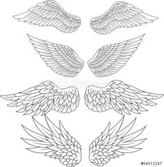 Wektor: Wings tattoo