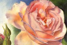 rose by Doris Joa