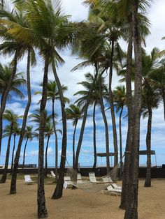 Dreaming of hammocks under the shade? Feel free to do so as soon as your meeting breaks in Puerto Rico.