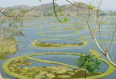 Loktak Lake and Sendra Island 48 kms from Imphal, Loktak Lake the largest freshwater lake, in the Eastern region of India