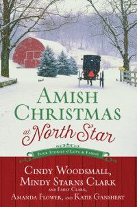 If you want to be enchanted by the Amish culture and have a fun read for Christmas, look no further than Amish Christmas at North Star!