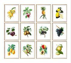 Botanical Art Print set kitchen prints kitchen by curiousgallery