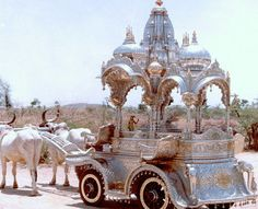 Oxen pulling #silver carriage in India