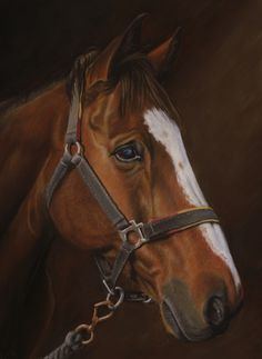 Highly detailed pastel portrait of a horse