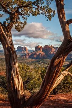 "David Curry-- ""After the Rain,"" Sedona Arizona Wonderful Places, Beautiful Places, Beautiful Pictures, Landscape Photography, Nature Photography, Amazing Photography, Photography Tips, Photography Hashtags, Photography Classes"