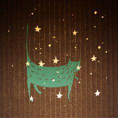gatos  y estrellas