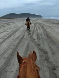 I want to ride horseback on the beach...Long Beach, WA, may be just the place!