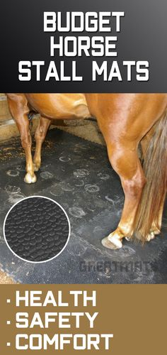 Discover which five horse stall mats offer the most benefits for the lowest price. Barn Stalls, Horse Stalls, Horse Barns, Horses, Horse Barn Plans, Horse Barn Decor, Horse Tack Rooms, Horse Barn Designs, Horse Shelter