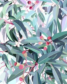 Discover Australian artist Lamai Anne's beautiful Native Grace range. Modern and contemporary art for you home interior. Bring the Australian outdoors inside! Australian Native Flowers, Australian Artists, Modern Art Prints, Wall Art Prints, Tree Wall Art, Photoshop, Abstract Watercolor, Abstract Art, Botanical Art