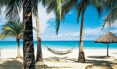 Jamaica - What a great place to spend your honeymoon! :).or second honeymoon