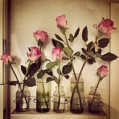 #Roses What a lovely!