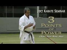 3 POINTS of POWER - 2017 Karate Seminar by Malcolm Dorfman Sensei - 9th Dan