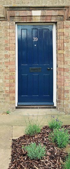 blue front door - love this color & it could work with the brown shutters.