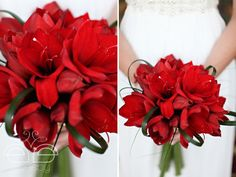 red amaryllis bouquet - so striking!