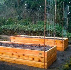 Preparing to Plant: A Garden Checklist for March