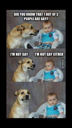 1 op de drie mensen is gay