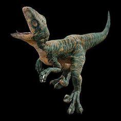 Echo Jurassic World Characters, Jurassic World Raptors, Jurassic World 2015, Jurassic Park Toys, Jurassic World Dinosaurs, Donald Disney, Naruto, Super Cute Animals, Dinosaur Art
