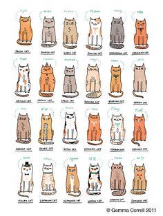 world of kitties - gemma correll