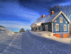 Perfect winter