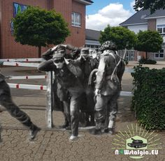 Hamminkeln, 1945, Prisoners Ww2, World War, Animals, Animais, Animales, Animaux, Animal, Dieren