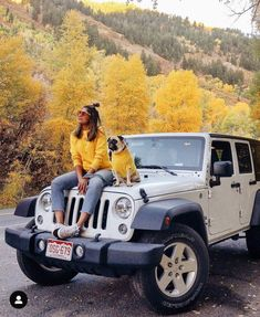 Jeep Discover Twinning Jumpers for Dog and Human//Crew Neck Woman Jumper//Turtleneck Dog Sweater//Matching Dog Owner Knitting Clothes// Jeep Photos, Dog Photos, Car Pictures, Jeep Jk, Jeep Wrangler, My Dream Car, Dream Cars, Sahara Jeep, Dog Sweaters