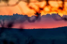 Photo by Deschu Oldham Game Reserve, South Africa, Sunrise, African, Clouds, Outdoor, Outdoors, Sunrises, Outdoor Games