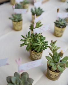 Kleine Gastgeschenke zur Hochzeit - Sukkulenten