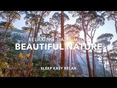 Calming Relaxing music with sounds of the forest. Ideal for calm relaxation anytime, especially before sleep. Sleep Easy Relax channel is perfect for relaxat. Calming Songs, Relaxing Music, Meditation For Anxiety, Meditation Music, Ocean Sounds, Nature Sounds, Sleeping Songs, Forest Sounds, Native American Music