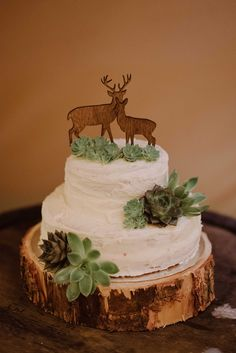 Succulents, log chunk and buttercream cake made by the brides sister, wooden stag couple // www.tupelotree.co.uk