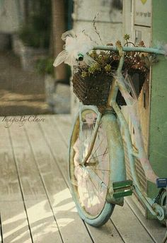 shabby chic old bicycle display Velo Vintage, Vintage Bicycles, Vintage Love, Vintage Romance, Vintage Green, Vintage Travel, Vintage Style, Old Bicycle, Old Bikes
