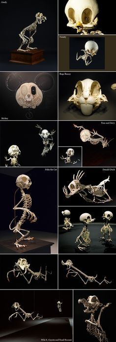 Cartoon Skeletons by South Korean artist Hyungkoo Lee