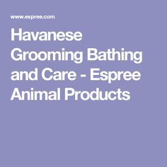 Havanese Grooming Bathing and Care - Espree Animal Products