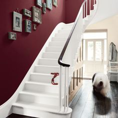 Deep burgundy walls for the staircase!!! Oooo yesss please