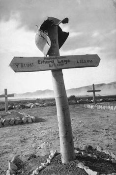 This guy didnt end well......German cemetery, Tunisia, 1943.