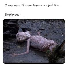 Work Memes, Work Quotes, Funny Work Meme, Work Funnies, Medical Humor, Nurse Humor, Funny Relatable Memes, Funny Quotes, Funny Images