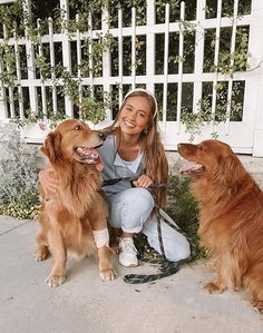 Kristin Johns, Super Cute Puppies, Kittens, Cats, Goldendoodle, Dog Names, Four Legged, Mans Best Friend, Youtubers