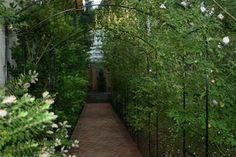 Our Backyard Arbor