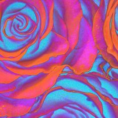 "Saatchi Online Artist TOULA MAVRIDOU-MESSER; Photography, ""NEW Photographic Art Print For Sale: Pop Art Pink Neon Roses Square"" #art"