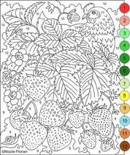 Kleurplaten Voor Volwassenen Met Nummers.40 Beste Afbeeldingen Van Kleur Op Nummer Paint By Number Adult