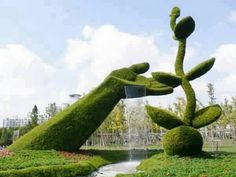 Topiary Beautiful Privet topiary - If you have a big garden or backyard and you are willing to bring something new in it, here is the right solution for you. Look at these amazing grass Topiary Plants, Topiary Garden, Topiary Trees, Fountain Garden, Fountain Grass, Flower Plants, Flower Art, Unique Gardens, Amazing Gardens