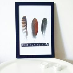 my new photoframe feathers