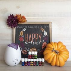 The Premium Starter Kit is by far the best deal!  For $160 you receive the following: -Dewdrop Diffuser (shown is the Home Diffuser) -11 Oils (Frankincense, Lemon, Peppermint, Thieves, RC, Digize, Copaiba, Lavender, Purification, PanAway and Stress Away) -Samples, Catalog, Roll-on attachment and more! Purchasing now will ensure you have an army of oils to help get you through this season!