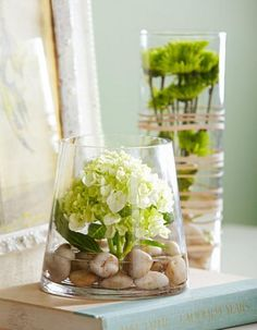 A glass cylinder vase protects a single hydrangea anchored in water with stones. More ideas for budget flower displays: http://www.midwestliving.com/homes/decorating-ideas/5-budget-flower-arrangements/