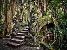 Ubud Monkey Forest, Ubud, Bali