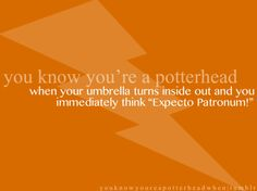 "When your umbrella turns inside out and you immediately think ""Expecto Patronum!"""