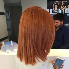 Straight Bob Cut Short Haircut for Fine Hair Blunt Bob Hairstyle Highlights on Dark Hair Hottest Red Hair Color Ginger Hair Color, Red Hair Color, Ginger Hair Dyed, Front Hair Styles, Hair Front, Balayage Hair, Haircolor, Hair Looks, Hair Trends